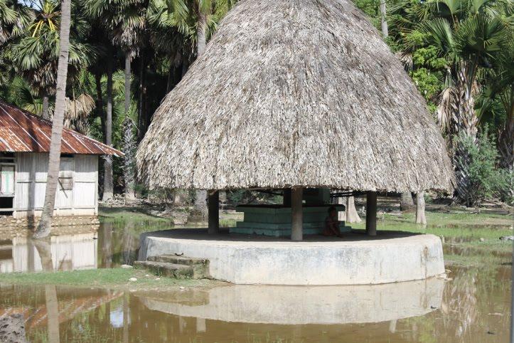 rumah adat timor