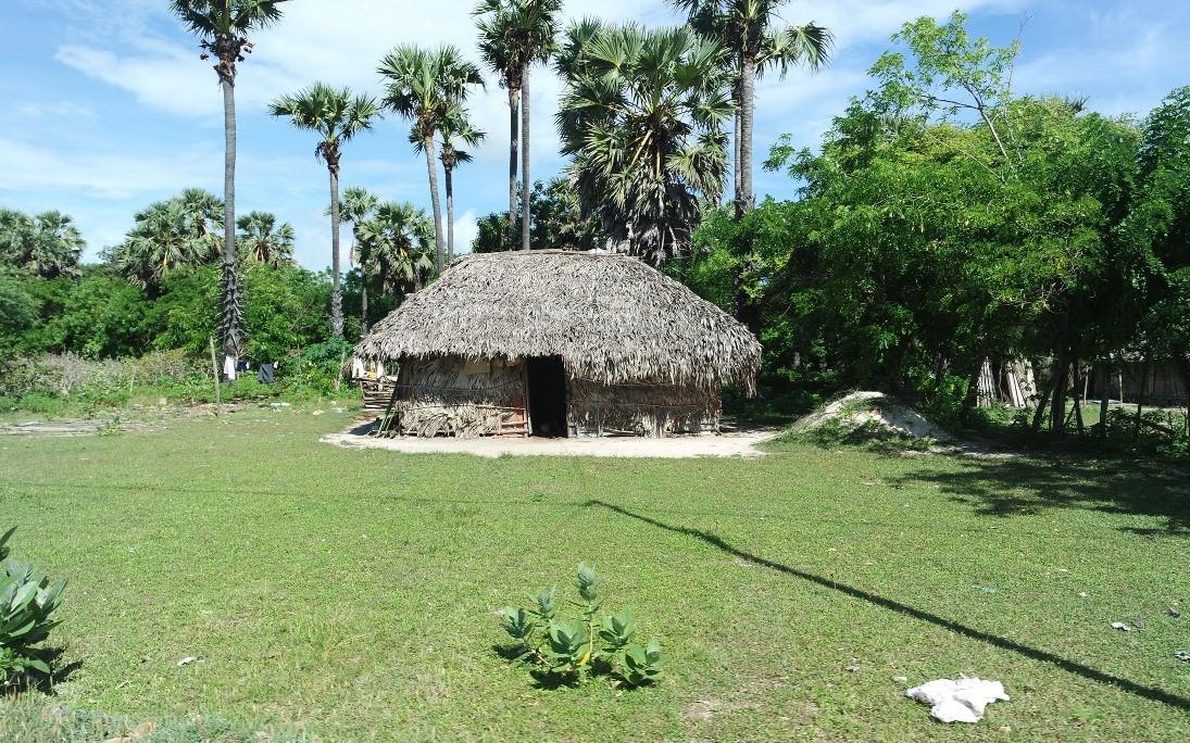 rumah tradisional pulau semau