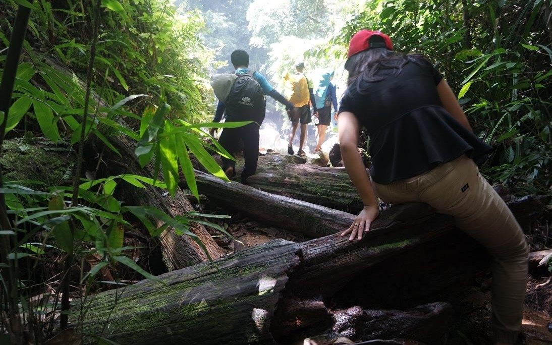 trekking ke air terjun nyarai