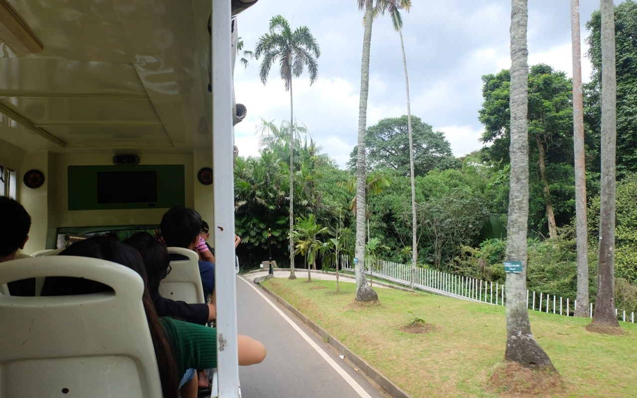 bus wisata kebun raya bogor