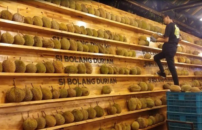 wisata kuliner medan si bolang durian