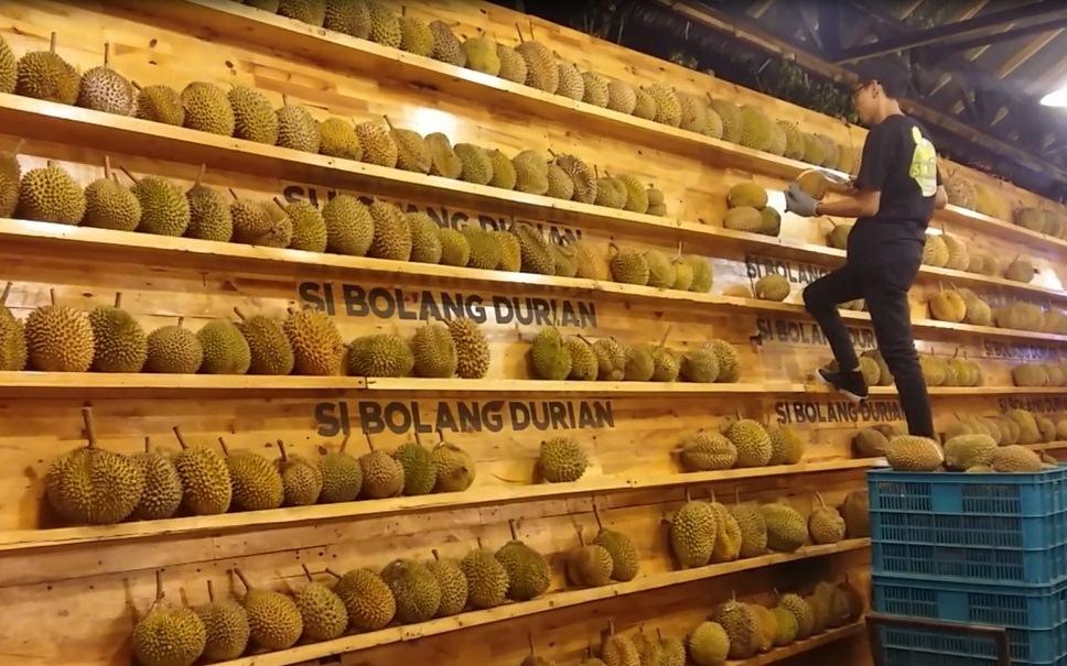 si bolang durian, Medan