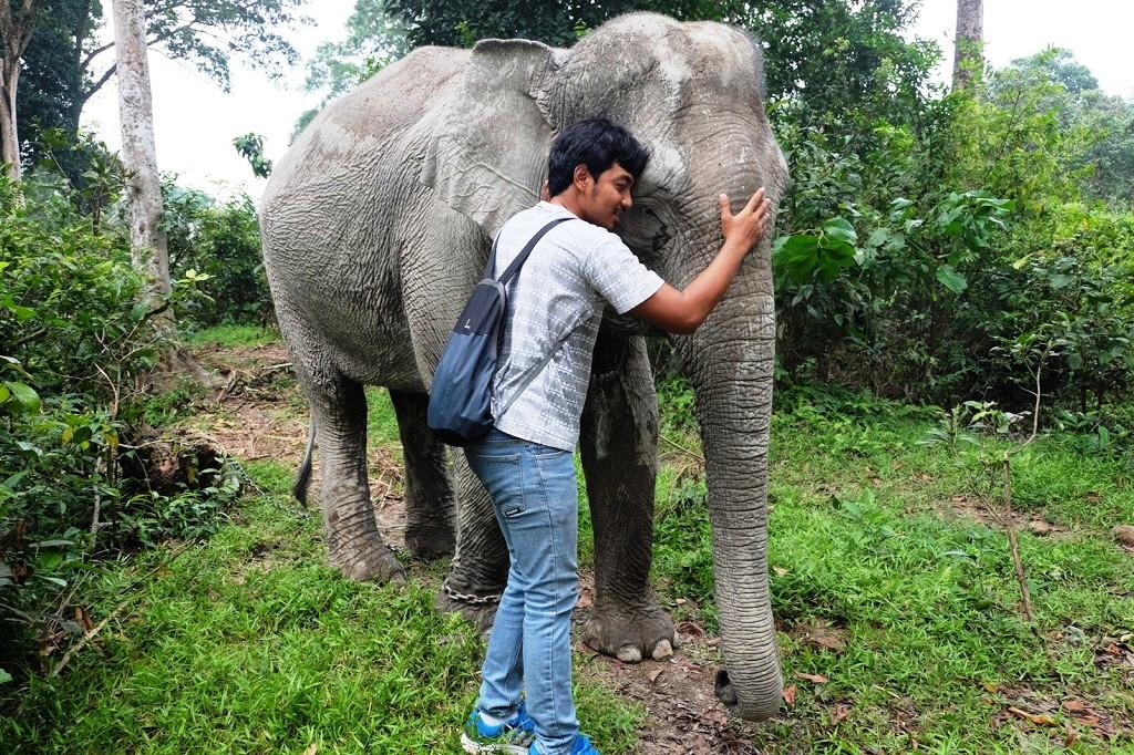 bercengkerama dengan gajah ngatini buluhcina wisata kampar