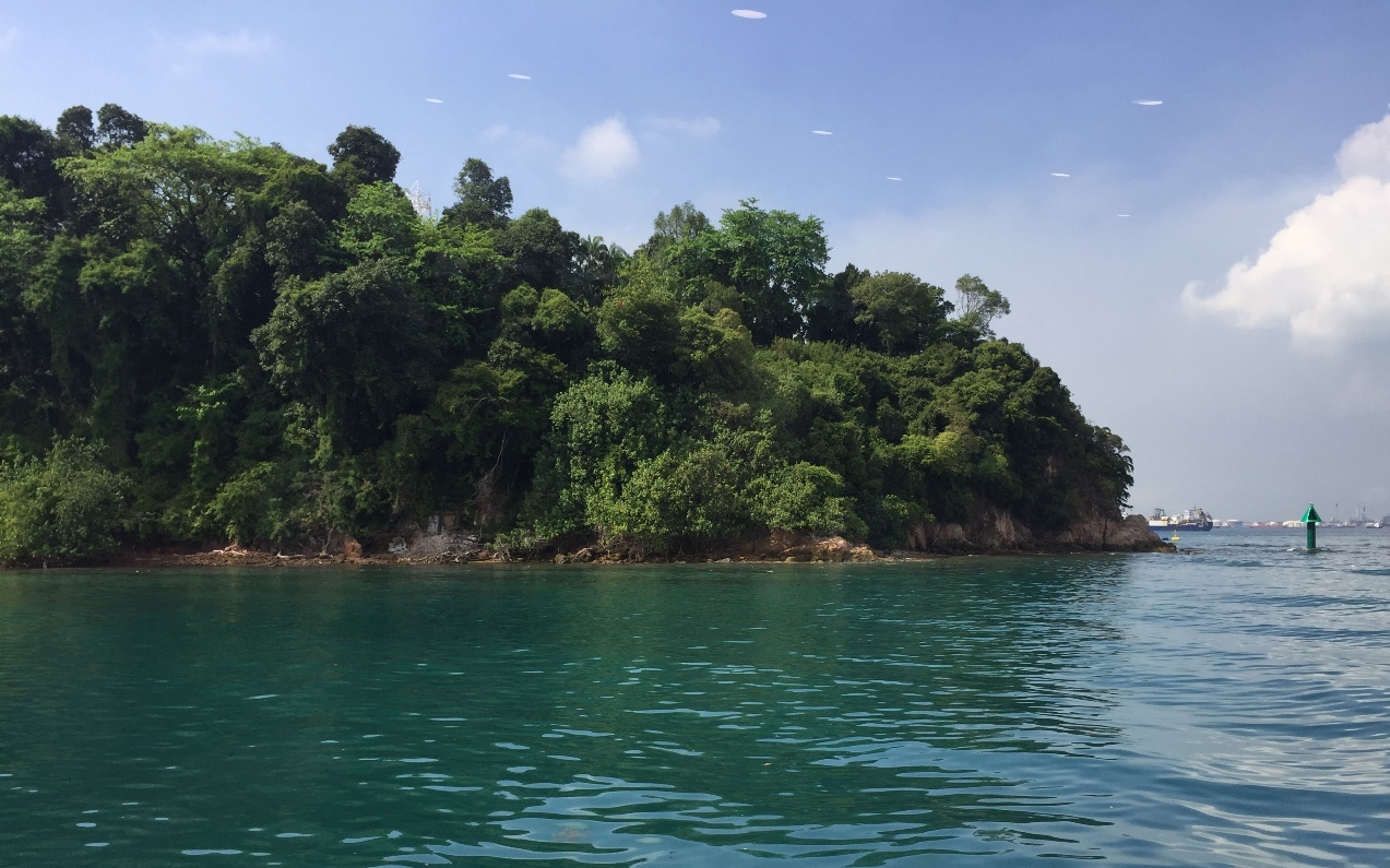 laut singapura