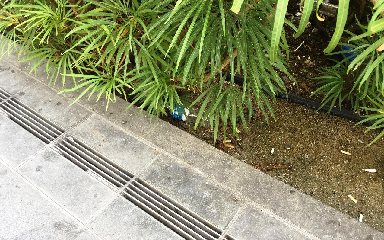 sampah di singapura